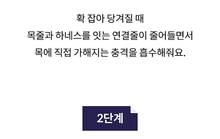 닥터설 앞섬방지 하네스 세트-상품이미지-15